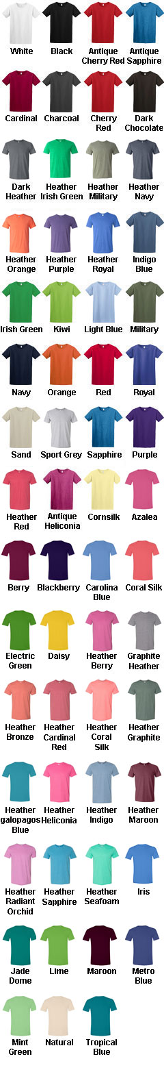Gildan 100% Soft Style™ Tee - All Colors