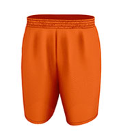 Custom Alleson Youth eXtreme Mesh Basketball Short