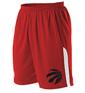 Custom Alleson Youth NBA Toronto Raptors Shorts