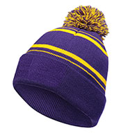 Custom Holloway Homecoming Beanie